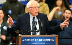 Illinois primary determines Democratic delegates