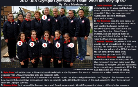 2012 USA Olympic Gymnastics Team: What are they up to?