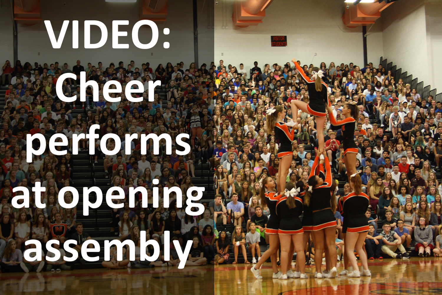 Cheer squad performs during opening day assembly