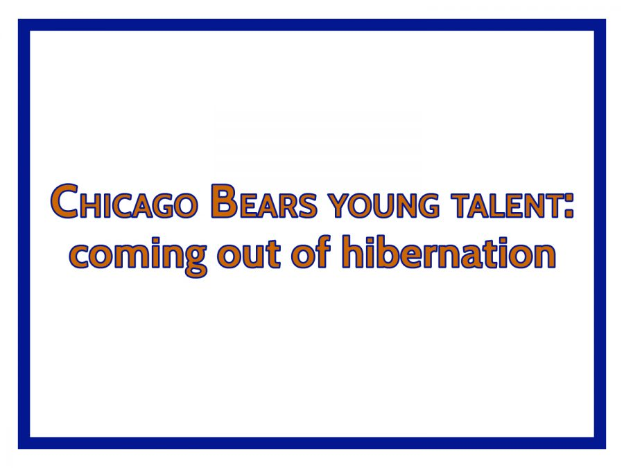 Chicago Bears young talent: coming out of hibernation