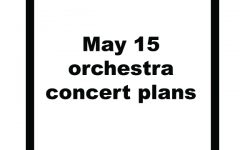 Preview: Orchestra performs spring concert May 15