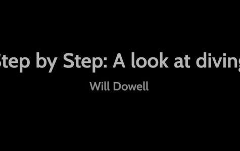 Video: Step by Step: A look at diving