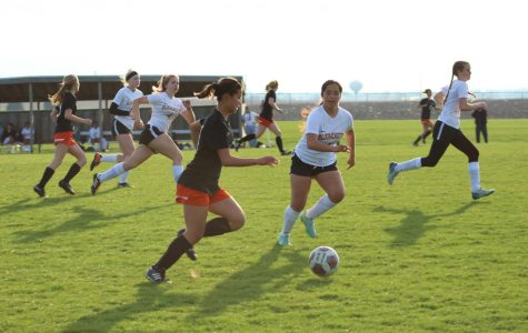 Photo Gallery: Lady Iron soccer's senior night