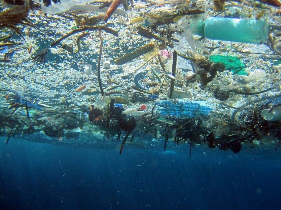 In the Great Pacific Garbage Patch, thousands of tons of waste materials are gathered by ocean currents. The mix of floating objects and sinking dense debris create a vortex of waste that poses risks for wildlife.