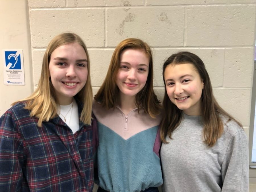 Mila Sajovec, Olivia Wexler, and Jenna Muehleck (left to right) are the co-founders of the newly-formed Earth Club.