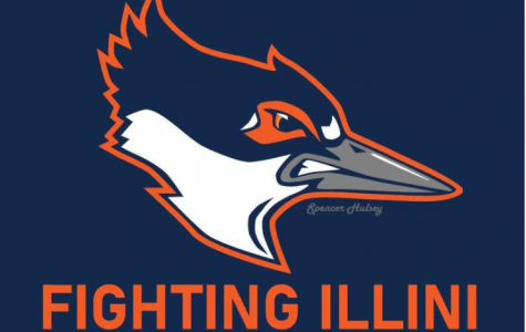 The proposed new mascot for the University of Illinois, the Belted Kingfisher, was endorsed in a landslide vote Sept. 21.